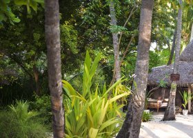 maledivy-hotel-diamonds-thudufushi-131.jpg