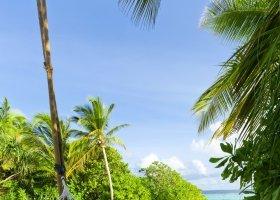 maledivy-hotel-dusit-thani-maldives-241.jpg