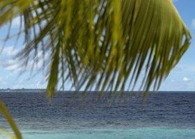 maledivy-hotel-dusit-thani-maldives-256.jpg