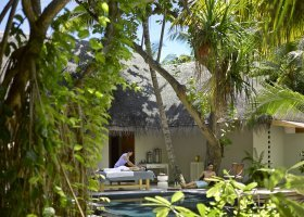 maledivy-hotel-dusit-thani-maldives-317.jpg