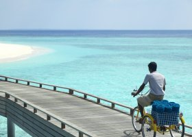 maledivy-hotel-dusit-thani-maldives-325.jpg