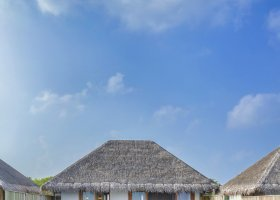 maledivy-hotel-dusit-thani-maldives-334.jpg