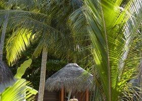 maledivy-hotel-dusit-thani-maldives-346.jpg