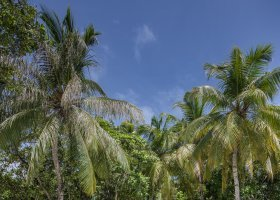 maledivy-hotel-emerald-maldives-055.jpg