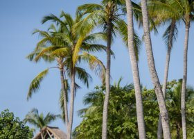 maledivy-hotel-emerald-maldives-061.jpg