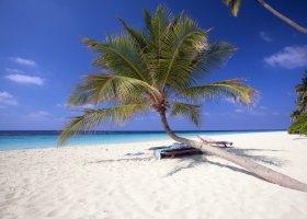 maledivy-hotel-filitheyo-island-resort-051.jpg