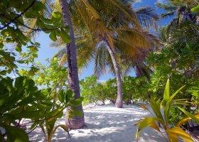 maledivy-hotel-filitheyo-island-resort-124.jpg