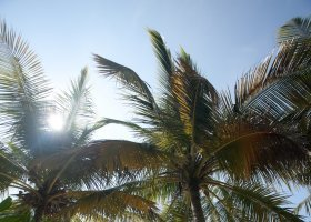 maledivy-hotel-filitheyo-island-resort-126.jpg
