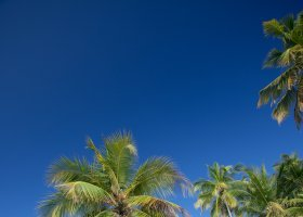 maledivy-hotel-filitheyo-island-resort-134.jpg