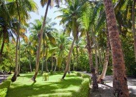 maledivy-hotel-filitheyo-island-resort-137.jpg