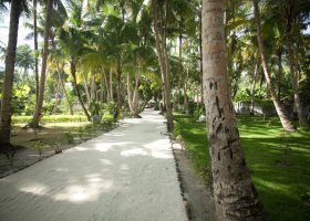 maledivy-hotel-filitheyo-island-resort-161.jpg