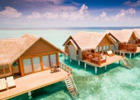 maledivy-hotel-furaveri-island-resort-spa-095.jpg