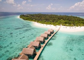 maledivy-hotel-furaveri-island-resort-spa-096.jpg