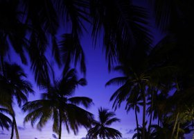 maledivy-hotel-gili-lankanfushi-179.jpg