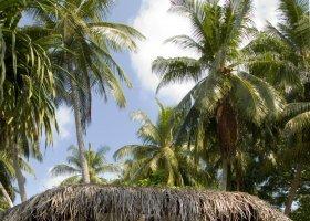 maledivy-hotel-kuramathi-island-resort-095.jpg