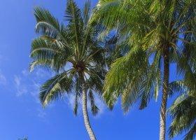 maledivy-hotel-kuramathi-island-resort-141.jpg