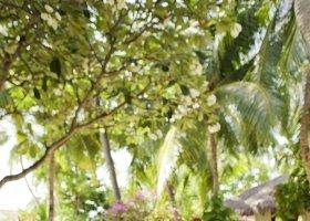 maledivy-hotel-kuramathi-island-resort-194.jpg
