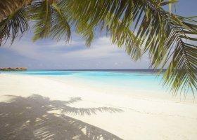 maledivy-hotel-lily-beach-resort-103.jpg