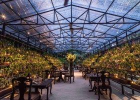 Botanica - dům orchidejí