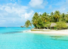 maledivy-hotel-palm-beach-077.jpg