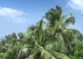 maledivy-hotel-vakkaru-maldives-032.jpg