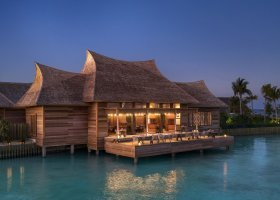 maledivy-hotel-waldorf-astoria-maldives-ithaafushi-032.jpg