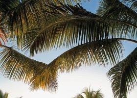 mauricius-hotel-victoria-beachcomber-209.jpg