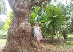mauritius-listopad-2012-045.jpg