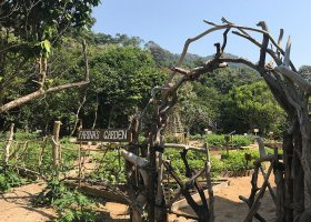 myanmar-hotel-wa-ale-island-resort-090.jpg