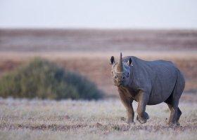 namibie-057.jpg
