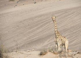 namibie-082.jpg