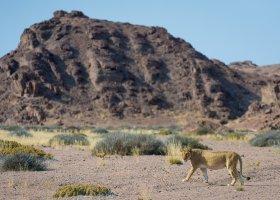 namibie-088.jpg
