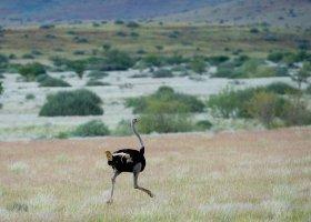 namibie-hotel-damaraland-camp-017.jpg