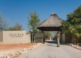 namibie-hotel-ongava-lodge-089.jpg