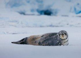 polarni-expedice-083.jpg