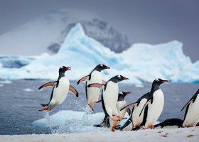 polarni-expedice-090.jpg