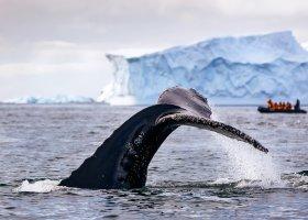 polarni-expedice-094.jpg