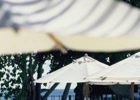 polynesie-hotel-bora-bora-pearl-beach-resort-018.jpg