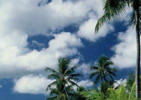 polynesie-hotel-bora-bora-pearl-beach-resort-062.jpg