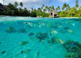 polynesie-hotel-intercontinental-resort-thalasso-spa-054.jpg