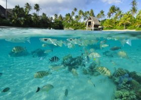 polynesie-hotel-intercontinental-resort-thalasso-spa-081.jpg