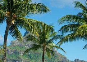polynesie-hotel-intercontinental-resort-thalasso-spa-105.jpg