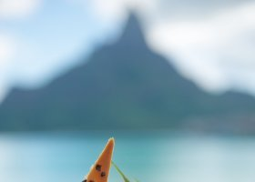 polynesie-hotel-intercontinental-resort-thalasso-spa-130.jpg