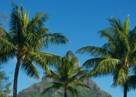 polynesie-hotel-intercontinental-resort-thalasso-spa-146.jpg