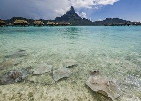 polynesie-hotel-intercontinental-resort-thalasso-spa-199.jpg