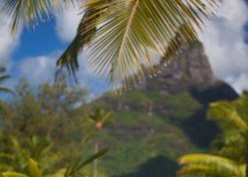 polynesie-hotel-intercontinental-resort-thalasso-spa-209.jpg
