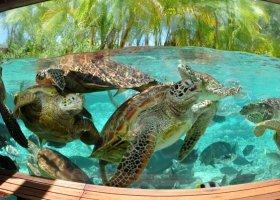 polynesie-hotel-le-meridien-bora-bora-059.jpg