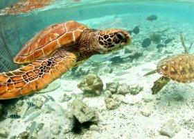 polynesie-hotel-le-meridien-bora-bora-078.jpg