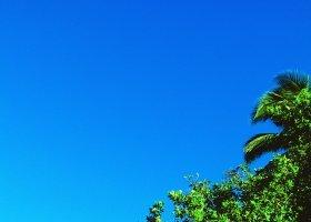 polynesie-hotel-le-meridien-tahiti-066.jpg
