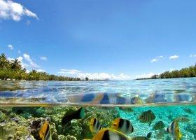 polynesie-hotel-le-taha-a-private-island-062.jpg